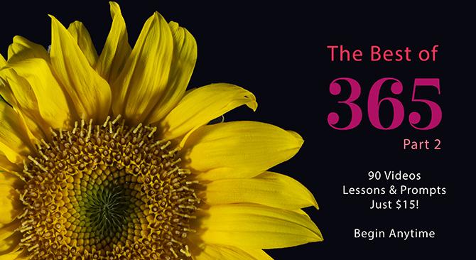 https://www.carlasonheim.com/online-classes/the-best-of-365-part-2/